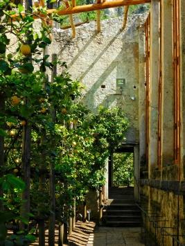Entrata limonaia El Castèl